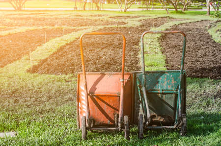 An image of two wheelbarrow on the grass in the garden