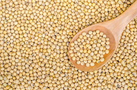 Soybean in wood spoon on Soybean background. Top view
