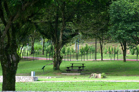 Tranquil deserted park scene with table-benches and footpaths photo