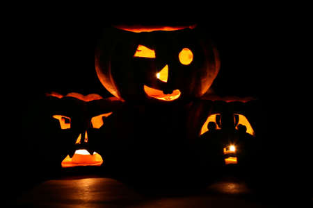 raw gold: A bunch of jack-o-lanterns, carved from small pumpkins, lit and in the dark Stock Photo
