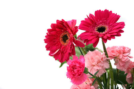 Pink Gerberas and carnations in the corner of frame photo