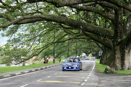 arcuate: Arco pioggia rami di albero a Taiping lacustri giardini
