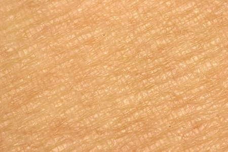 Ciérrese encima de mirada en los patrones de la piel humana