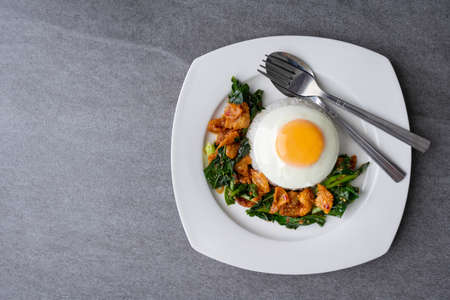 Fried Chinese kale with crispy skin chicken in oyster sauce and chilli in the white dish, fried egg, rice. Banco de Imagens
