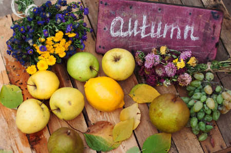 autumn food: fruit, apples, pears, lemon on a wooden background