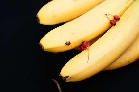 platano maduro: Manojo de pl�tanos en el fondo negro