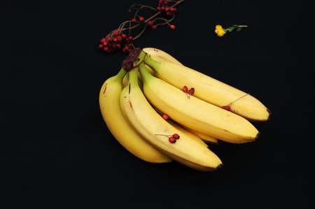 banane: R�gime de bananes sur fond noir