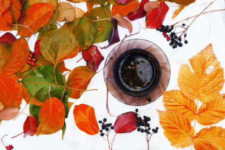 cup: cup of tea surrounded by autumn leaves Stock Photo