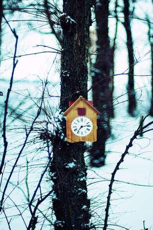 reloj cucu: Antiguo reloj de cuco de madera que cuelga en un �rbol en el bosque de invierno snednom. De fondo de invierno. Composici�n de invierno. bosque de invierno. Espacio de la copia. reloj despertador blanco con decoraci�n de Navidad