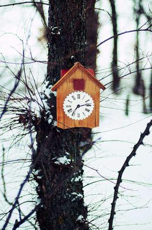 reloj cucu: Antiguo reloj de cuco de madera que cuelga en un árbol en el bosque de invierno snednom. De fondo de invierno. Composición de invierno. bosque de invierno. Espacio de la copia. reloj despertador blanco con decoración de Navidad
