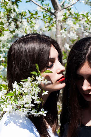 slavonic: Portrait of beautiful young girls, sisters dressed in ernoe and white, on a background of a blossoming tree. Young beautiful slavonic girls in white and black posing. Stock Photo