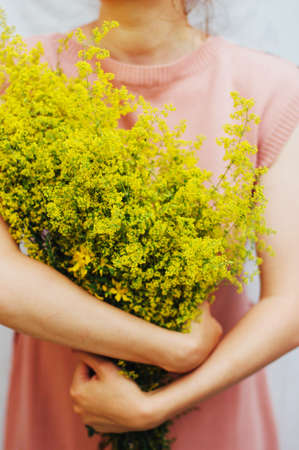 detail of bunch: young woman in a rosy dress holding a bunch of colorful picked wild flowers in her hands. Young woman with bouquet of wild flowers. Detail of womans hands holding wildflower bouquet