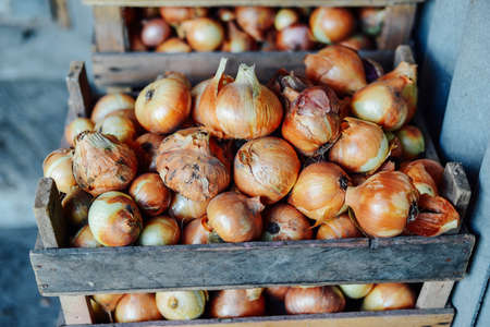 Organic Yellow onions in a basket. Shallots on wooden box.  Harvesting. Stock Photo