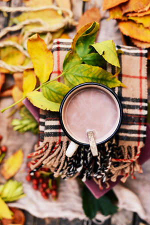 reflection of life: Warm knitted scarf and a book on a wooden tray. Peaceful Fall Fruit, Leaf, Acorn Still Life on Rustic . autumn still life with a cup of tea. Cup of tea with autumn leaves reflection on book Stock Photo