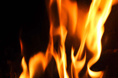 hellfire: Fire flames on a black background. Blaze fire flame texture background. Close up of fire flames isolated on black background. Burn. Abstract fire flames background. Texture.