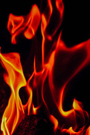 careless: Fire flames on a black background. Blaze fire flame texture background. Close up of fire flames isolated on black background. Burn. Abstract fire flames background. Texture.