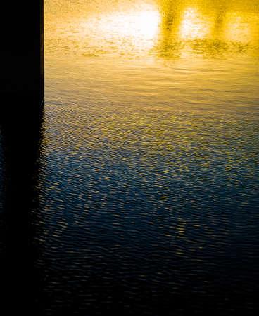 sunshines: thevsunShines under the bridge evening