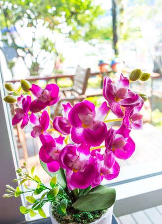dialectic: false flower violet color beautiful