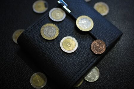 wallet with Argentine peso coins