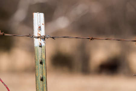 Green and white fence post with barbed wire