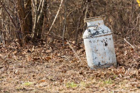 Vintage white milk can laying in the woods Stock Photo