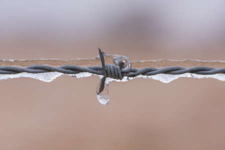 Ice frozen around barbed wire fence Stock Photo