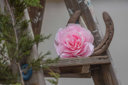 Pink paper rose on a grunge ladder and a horseshoe