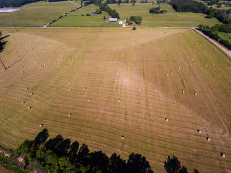 Aerial view of a large hay field dotted with big bales of hay