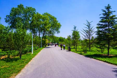horticultural: Green Road