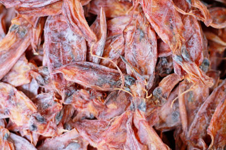 Dried Squid at Thailand Market  photo