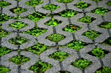 Brick block with grass.
