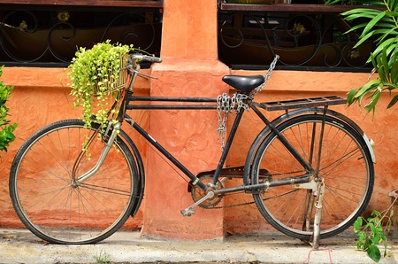 Old black bicycle with flowers. Stock Photo