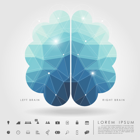 left and right brain polygon with business icon