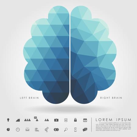 pensamiento creativo: cerebro izquierdo y derecho en el patrón de concepto y la geometría de forma libre Vectores