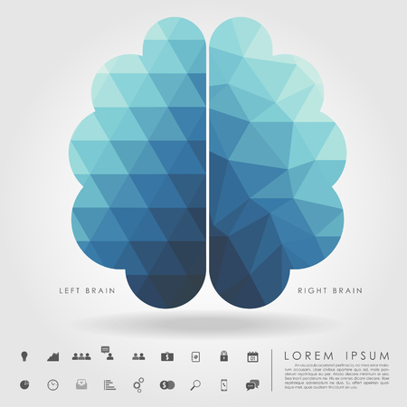 left and right brain on concept pattern and free form geometry Vector