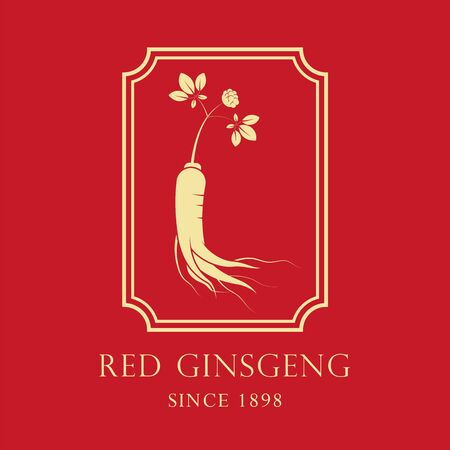 Red korean or chinese ginseng root illustration.