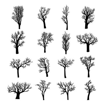 Black silhouettes of dead, dried, or leafless trees and saplings