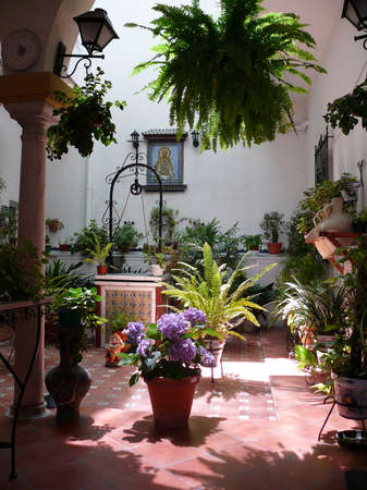 Andalusian patio with potted plants and a water well photo