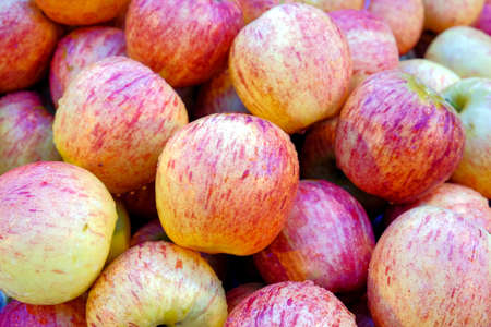 Fresh apples pink, apple is a fruit that provides vitamins and minerals important to the body. Antioxidants help prevent inflammation. Reduce wrinkles of age. Reduce scurvy. And also prevent cancer.