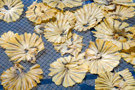 Dried fish, One of the seafood is souvenir of Ban Phe Fresh Market on Rayong province, Thailand