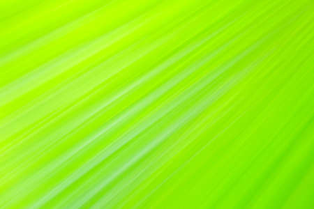 Close-up and long exposure effect of green fan palm leaf on blurred motion under sunlight in the morning, abstract of greenery nature background, for use wallpaper and backdrop on eco green concept Stock Photo