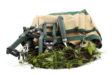 Set of garden tools and the holding bag photo