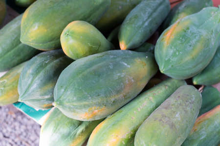 Raw papaya for sell