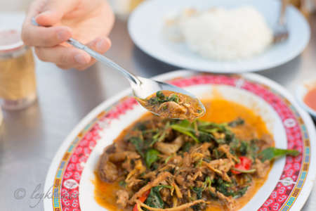 belly pepper: Stir Fried Wild Boar with Red Curry