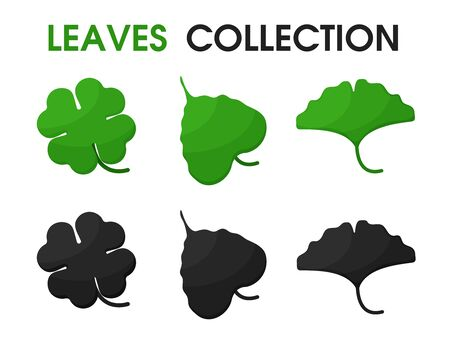 Beautiful shapes of leaves and shadows