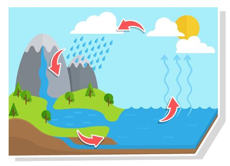 Water cycle diagram.Vector shows the water cycle from water droplets to raindrops.