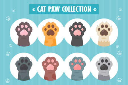 Cat paw set Different species Cute kitten hand designs isolated from background.