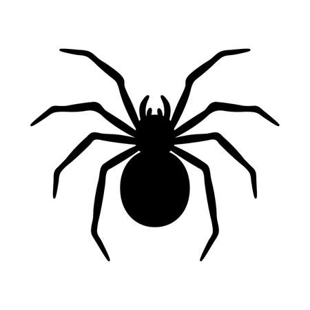 silhouette of a spider hanging from a web Abandoned House Horror Ideas for Halloween