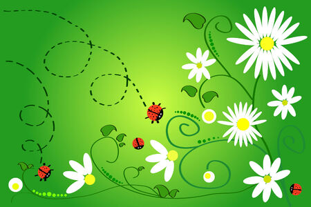 beautiful art: ladybug and chamomile on green background Vector