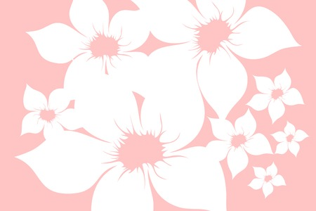 pinstripes: White  flowers on pink background (illustration)